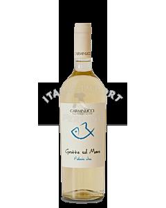 01_Weißwein-Carrminucci-Grotte-sul-Mare-Falerio-DOC-2019-webshop-italia-import