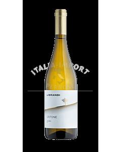 Librandi-Critone-Bianco-2020-webshop-italia-import