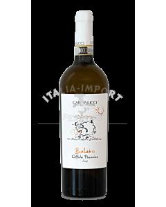 Marken-carminucci-belato-pecorino-docg-2019-webshop-italia-import